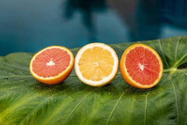 Verse citroen en grapefruit die op een groen blad dichtbij met water liggen