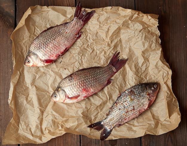 Verse crucian vis met schubben op een verfrommeld bruin stuk papier
