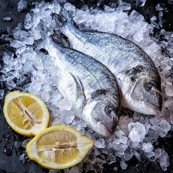 Verse dorado-vissen met citroenwiggen op zwarte achtergrond met ijsstukken