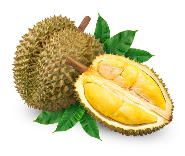 Verse durian met blad dat op wit, geïsoleerd durian-fruit wordt geïsoleerd. met uitknippad.