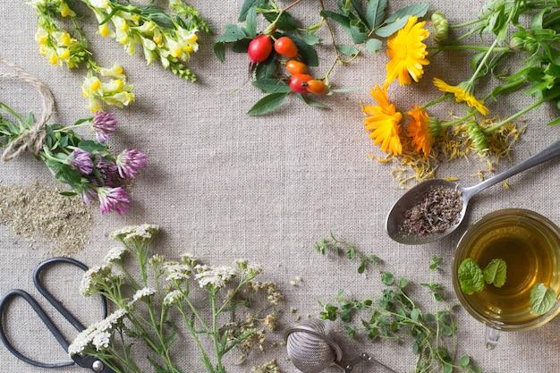 Verse en droge geneeskrachtige kruiden op doek