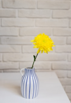 Verse enige gele bloem in gestileerd wit de textuuroppervlakte van de waterkruikvaas