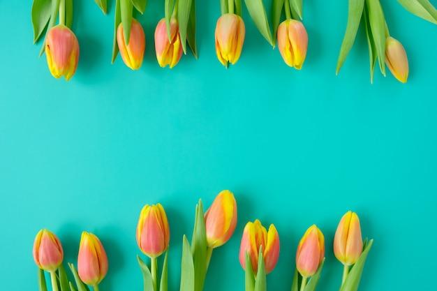 Verse geel-rode tulpen op een mint achtergrond. concept vakantie