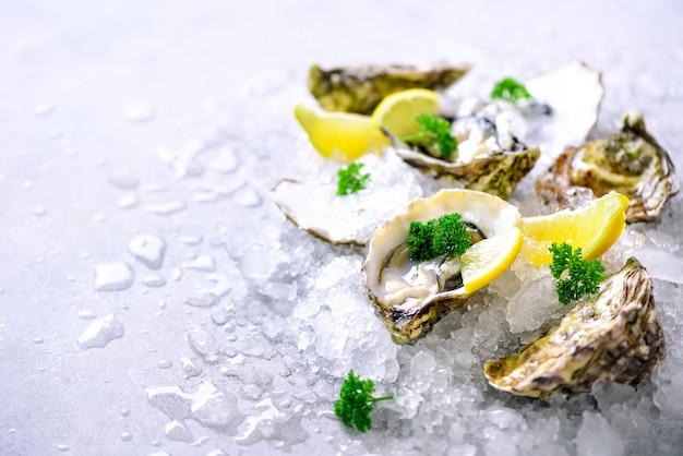 Verse geopende oesters, citroen, kruiden, ijs op betonsteengrijs.