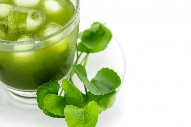 Verse groene gotu-kola, centella asiatica-blad en sap op wit, aziatische pennywort, indiase pennywort, een ayurvedisch medisch kruid