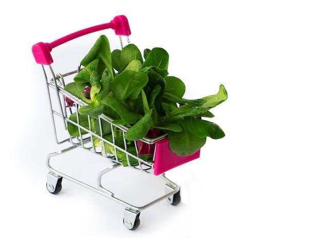 Verse groene groenten in kruideniersmand mini-winkelwagentje gevuld met microgreens en puree pureesalade dieetconcept gezonde voeding veganistisch voedselconcept winkelen in de supermarkt
