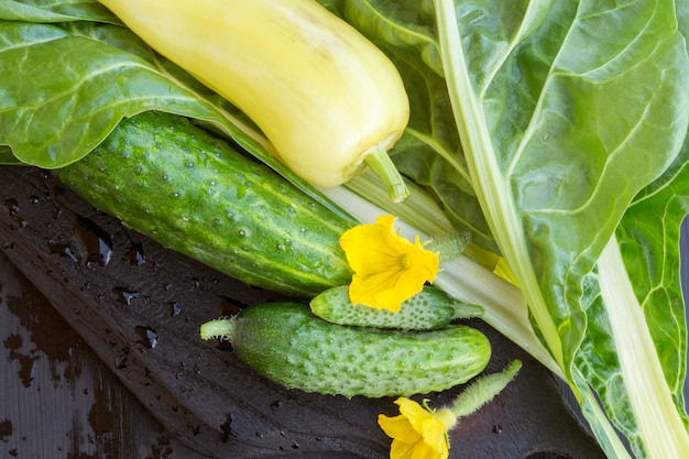 Verse groene groenten. salade ingrediënten.