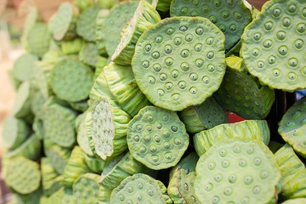 Verse groene lotus zaad pod zijn bindend van groep te koop op de thaise lokale straatmarkt. groene lotuszaden kunnen eten voor gezond voedsel.