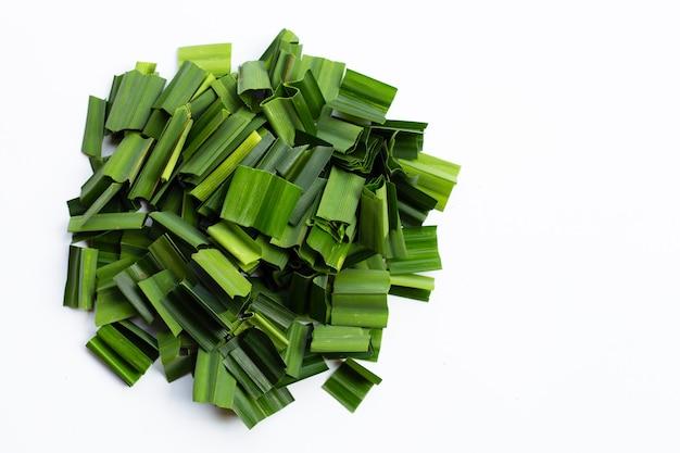 Verse groene pandanbladeren op witte achtergrond. kopieer ruimte