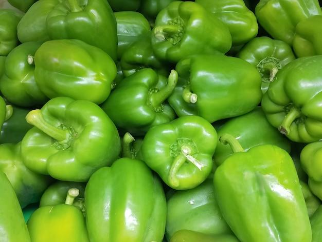 Verse groene paprika paprika boerderij oogst. zoete groene paprika capsicum achtergrond. oogsten.