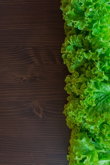 Verse groene sla op een donkere achtergrond. het concept is vegetarisme.