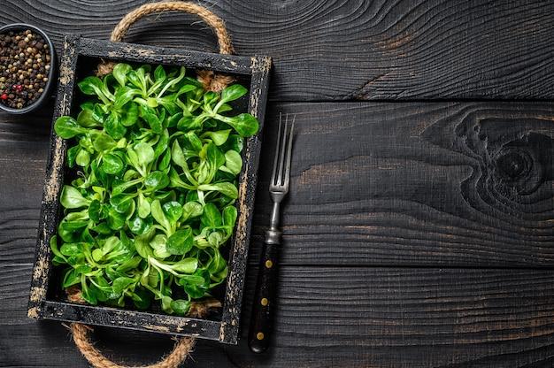Verse groene veldsla salade bladeren op een houten dienblad