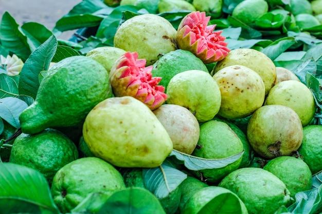 Verse guave bos