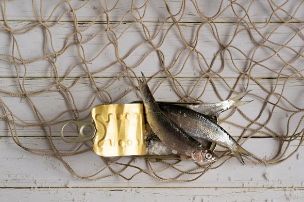 Verse ingeblikte vis gezond eten ingrediënten
