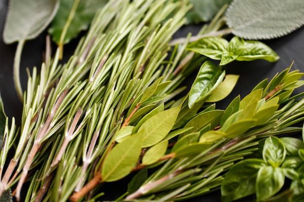 Verse italiaanse kruiden op donkere achtergrond. verscheidenheid aan kruiden, basilicum, rozemarijn, mirte, laurier Premium Foto