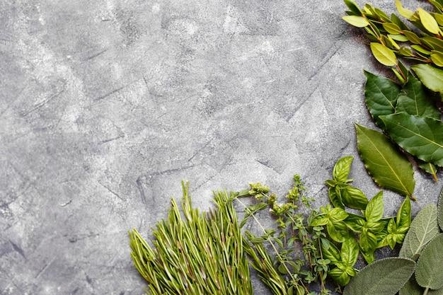Verse italiaanse kruiden op donkere achtergrond. verscheidenheid aan kruiden, basilicum, rozemarijn, mirte, laurier