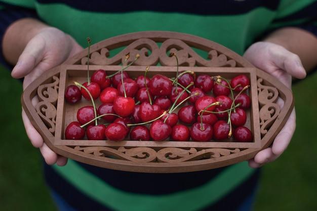 Verse kersenbessen met druppels op plaat in handen. biologisch voedsel.