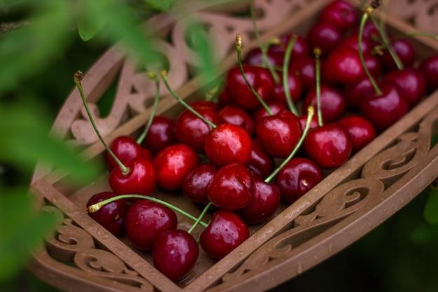 Verse kersenbessen met druppels op plaat in tuin onder groene bladeren. biologisch voedsel.