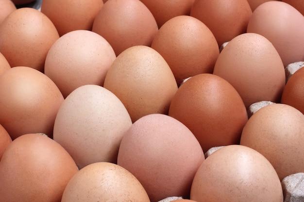 Verse kippen bruine eieren in verpakking