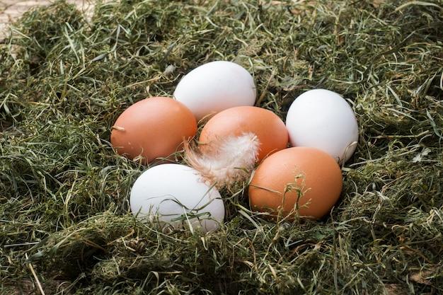 Verse kippeneieren op stro op het landbouwbedrijf. rustieke stijl.