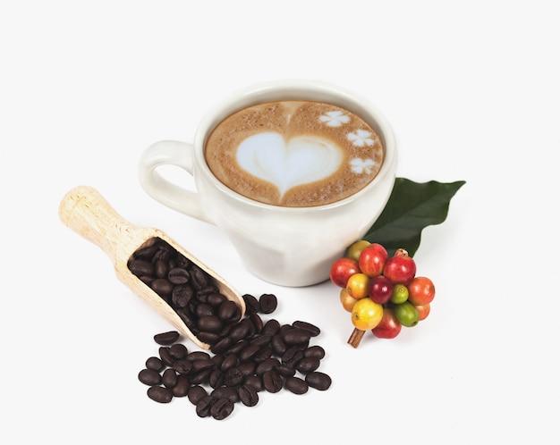 Verse koffiebonen en kop hete koffie, conceptenvoedsel en drank.
