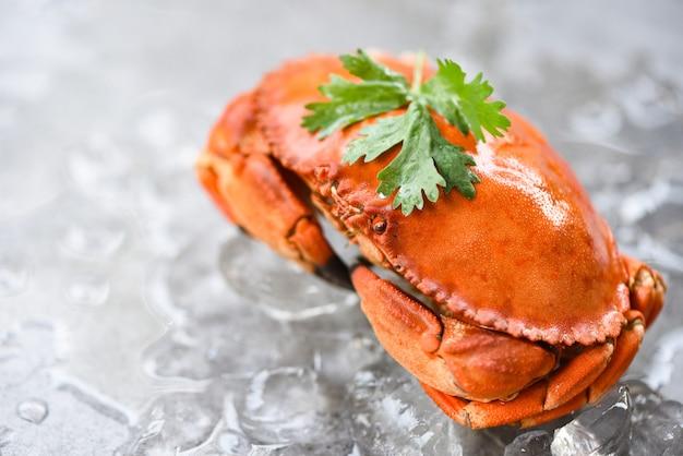 Verse krab op ijsachtergrond - gekookte krabbenzeevruchten
