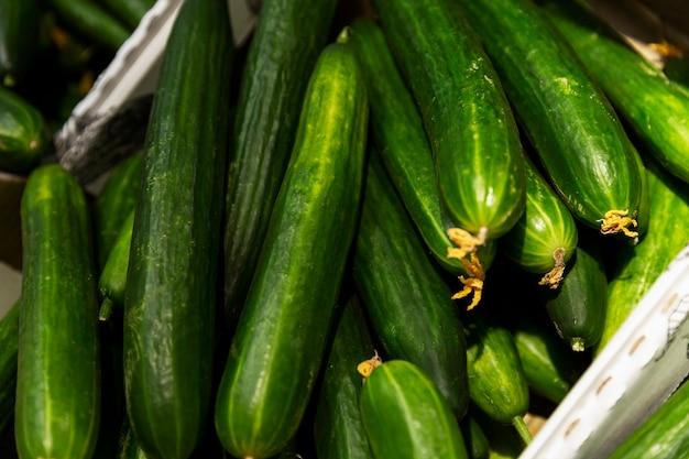 Verse lange komkommers in een doos in de winkel. detailopname. vegetarisme en vitamines.