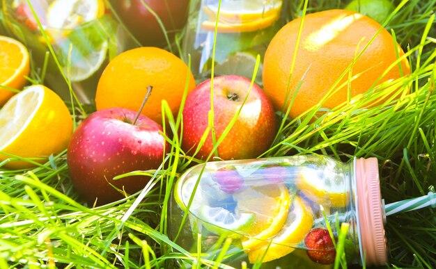 Verse limonade in potten met rietjes. hipster zomerdrankjes met fruit in groen gras buitenshuis. milieuvriendelijk in de natuur. citroenen, sinaasappelen en bessen met munt in het glas. gezonde veganistische levensstijl.