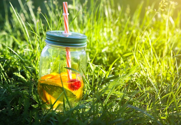 Verse limonade in potten met rietjes. hipster zomerdrankjes. milieuvriendelijk in de natuur. citroenen, sinaasappelen en bessen met munt in het glas. groen hoog gras buitenshuis.
