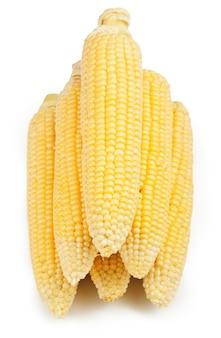 Verse maïsvruchten geïsoleerd op een witte ondergrond
