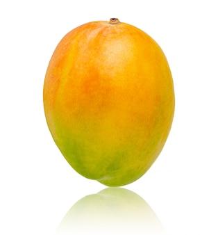 Verse mango geïsoleerd