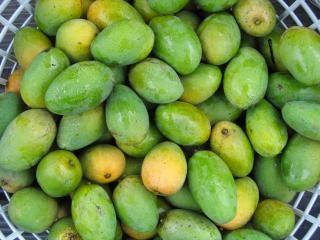 Verse mango's