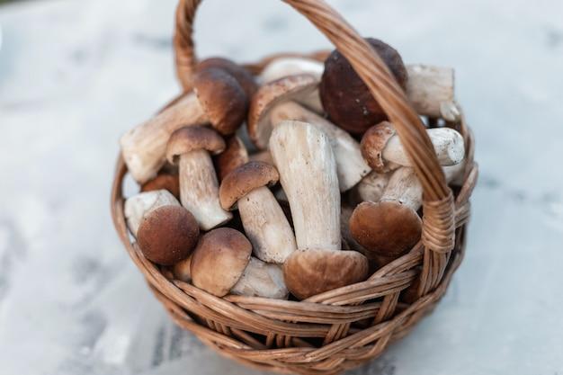Verse natuurlijke paddenstoelen in een mand op een grijze achtergrond