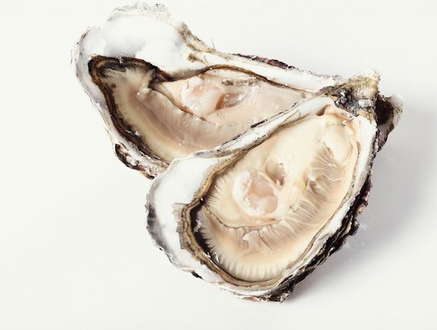 Verse oester