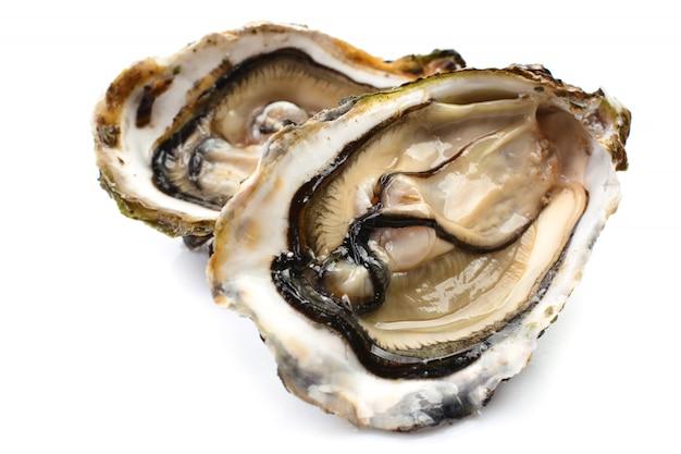 Verse oesters op een witte