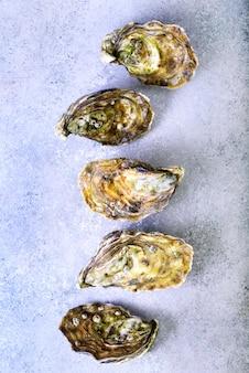 Verse oesters op grijze betonnen steen. bovenaanzicht, kopie ruimte