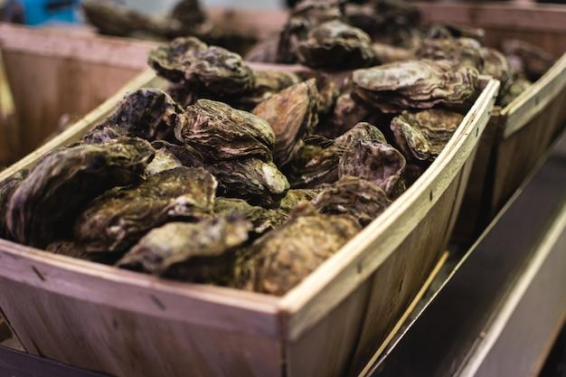 Verse oesters te koop