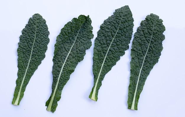 Verse organische groene boerenkoolbladeren op wit