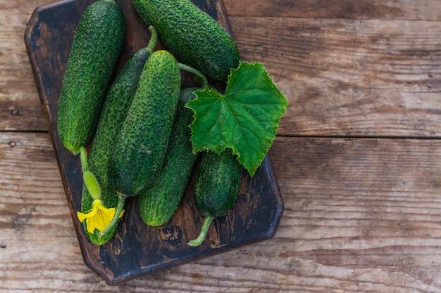 Verse organische komkommers