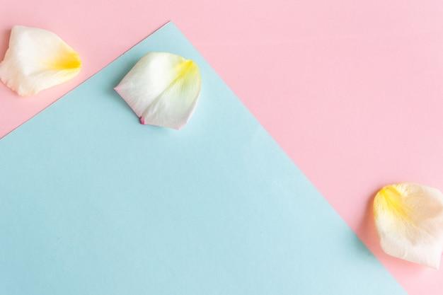 Verse pastelkleurenachtergrond met creatieve conceptenruimte voor het creëren van rozenblaadjes voor tekst