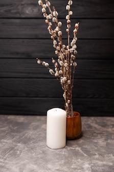 Verse pluizige wilgentakjes in vaas mooi huisdecor in het voorjaar