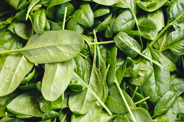 Verse rauwe biologische ongekookte spinazie met waterdruppels te koop bij boerenmarkt of winkel. veganistisch eten en gezonde voeding concept.