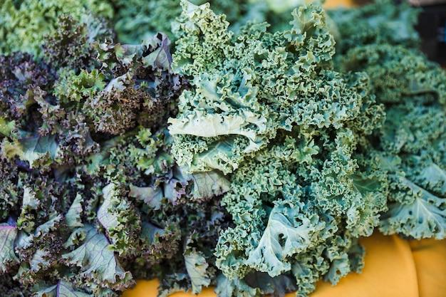 Verse rauwe groene boerenkool in de markt