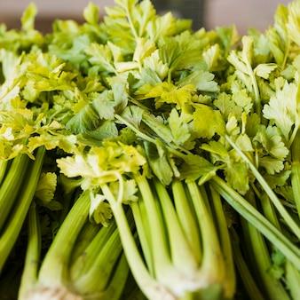 Verse rauwe organische selderij op de markt