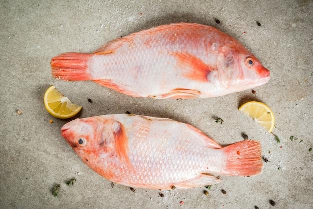 Verse rauwe roze tilapia vis met kruiden voor het koken