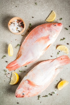 Verse rauwe vis roze tilapia met kruiden voor het koken van citroen, zout, peper, kruiden, op grijze stenen tafel, copyspace