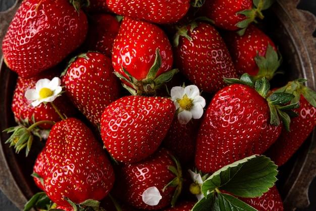 Verse rijpe biologische aardbeien met bloeiende plantbloemen