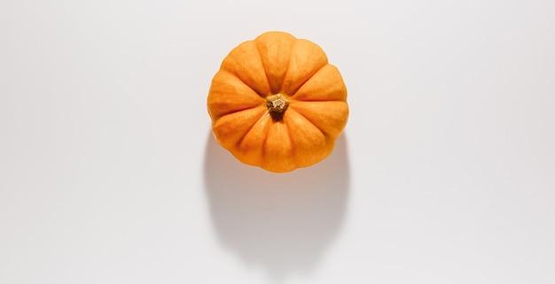 Verse rijpe oranje pompoen op witte achtergrond. ruimte voor tekst mockup halloween concept