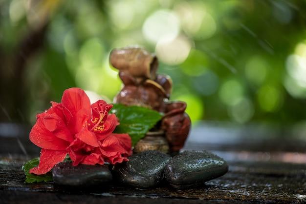 Verse rode hibiscusbloem op aardoppervlak.