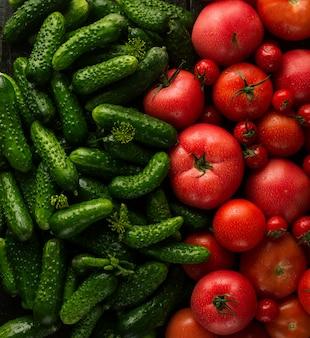 Verse rode tomaten en groene komkommers, nieuwe groenteoogst